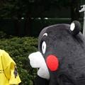 Photos: 2013年7月26日 福岡市役所ふれあい広場 山鹿市観光物産展 山鹿灯籠まつり くまモン04