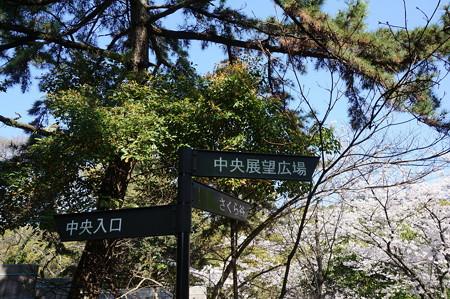 【さくら満開 写真】西公園 桜 福岡 2014年3月28日撮影 (24)
