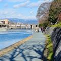 Photos: 晴れた冬の鴨川