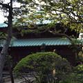 写真: 英勝寺仏殿2-20130608