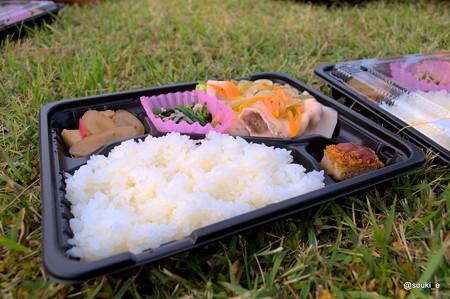 前田鮮魚の日替わり弁当
