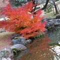 Photos: LR-20131208_170222-2