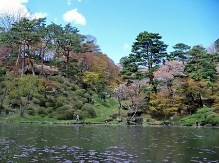 霞ヶ城公園(1)
