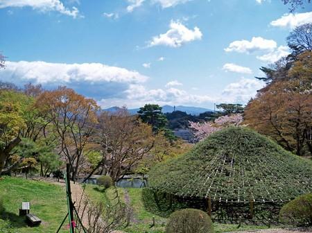 霞ヶ城公園(2)