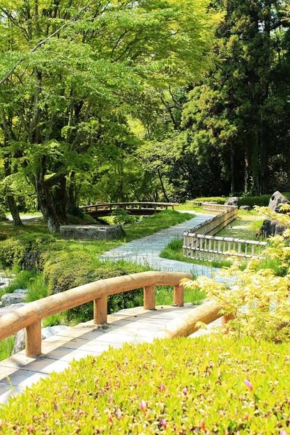 曽木公園にて IMG_6306_2