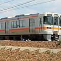 JR東海 313系電車 IMG_6730_2