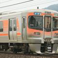 JR東海 313系8000番台 B202編成 IMG_6778_2