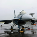 F-2A #514 IMG_7105_2