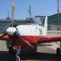 Photos: T-7 #916 第11飛行教育団 IMG_9467_2