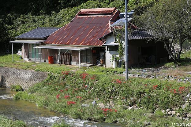 田舎の民家