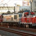 展示会入換列車 DE11 1041+EF510 509+EF81 81
