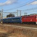 Photos: 試9502レ EF81 133+24系 6両