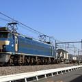 配6795レ EF66 36+コキ+トラ+コキ