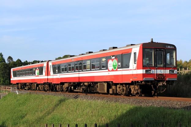 Photos: 116D 鹿島臨海鉄道6000形6014+6010 2両