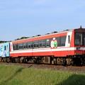 Photos: 113D 鹿島臨海鉄道6000形6007+6011 2両
