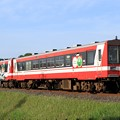 Photos: 118D 鹿島臨海鉄道6000形6016+6006 2両