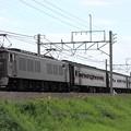 9831レ EF64 37+旧型客車 6両+EF64 1001