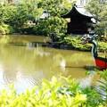 写真: 神泉苑