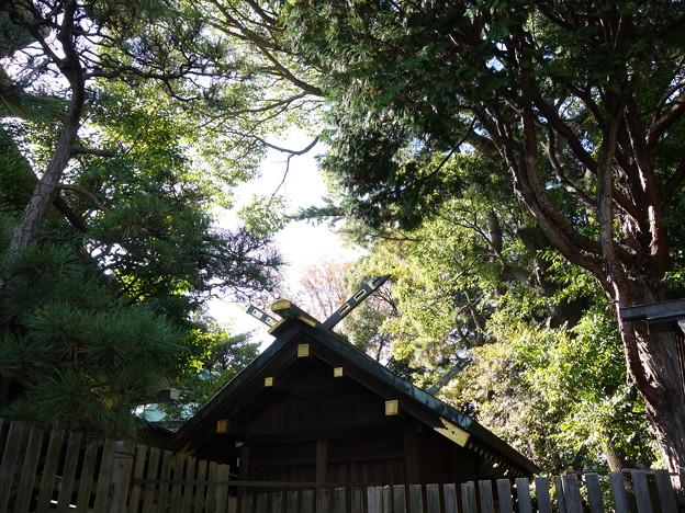 伊勢山皇大神宮 (横浜市西区宮崎町)