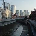 写真: 神田川 (新宿区北新宿)