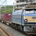 Photos: 代走 EF66-33