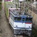Photos: 【日々の演習】1091レ 蘇我貨物@ 幕張本郷のお立ち台1号
