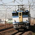 Photos: _MG_0094 EF65-2127「蘇我貨物」1091レ