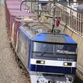 Photos: _MG_2406 「鹿島貨物」99レに運用されるEF210-120[鶴]