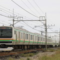 Photos: _MG_4647 E231系近郊型仕様