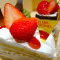 Photos: CLARK SHIEGEL クラークシーゲル