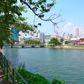 猿猴川右岸 広島市南区的場町