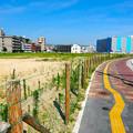 広島市東区二葉の里土地区画整理地区 二葉通り