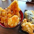 讃岐うどん 幅屋 udon habaya Hiroshima あなご天丼 tendon tempura tenpura 広島市南区皆実町6丁目