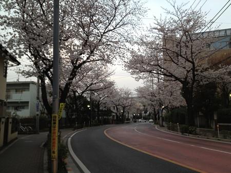 東京農大横
