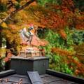 念仏寺の堂宇2