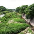 Photos: 天野川
