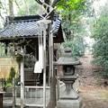 Photos: 茶臼山古墳 (7)・秋葉神社