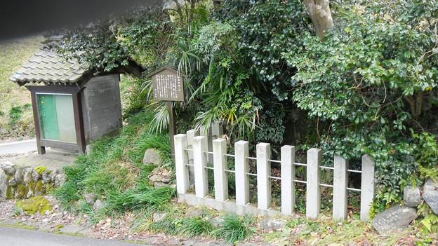 009矢尻の池(井) (2)