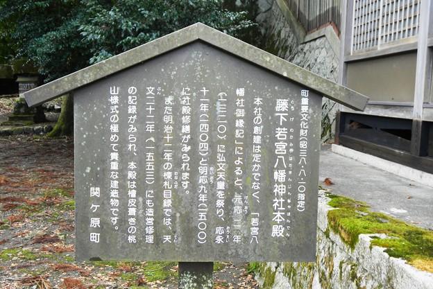 010藤下若宮八幡神社 (3)