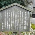 Photos: 010藤下若宮八幡神社 (3)