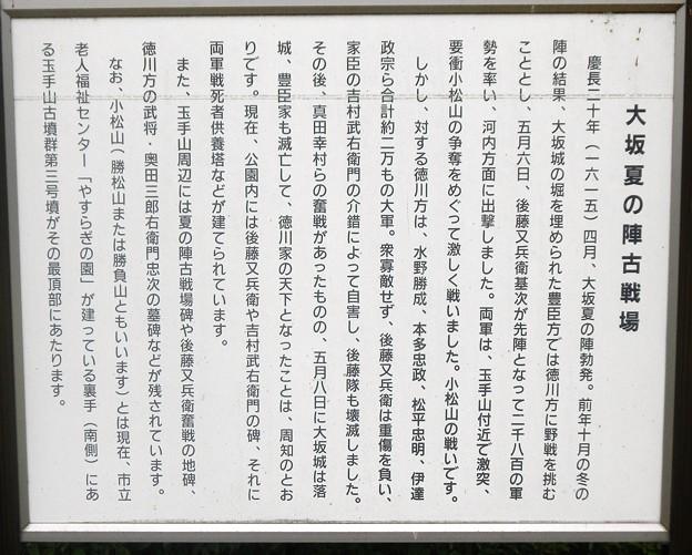 13大坂夏の陣古戦場