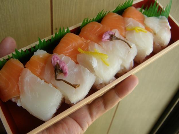 真鯛とサーモンの押し寿司 by 小僧寿し