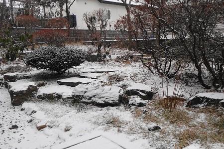 庭の積雪・朝