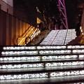 Photos: 階段にもイルミ