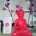 Photos: 赤い仏像