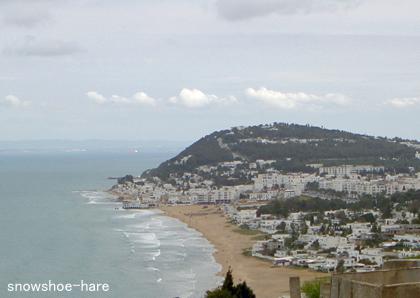 Photos: ラ・マルサのビーチ遠望