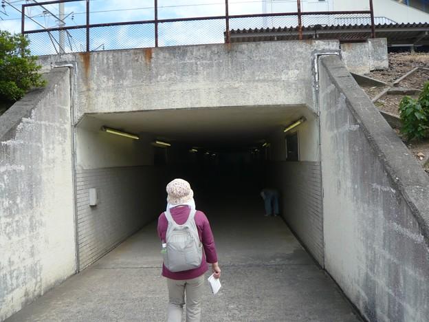 P1310173幸田駅へ