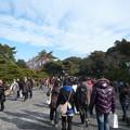 Photos: P1320628内宮