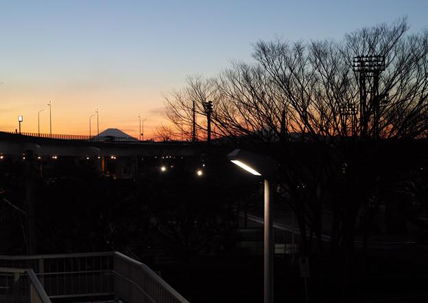 本牧三渓園から見た富士山(2)