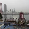 Photos: 20121217_142044